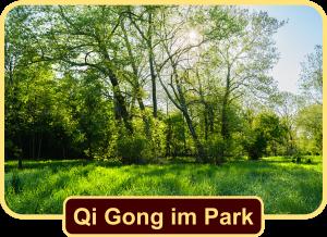 Qi Gong im Grüttpark Lörrach
